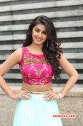 Cinema Actress Nikki Galrani New Albums 4102