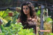 Film Actress Nikki Galrani 2014 Photos 8640