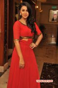 Film Actress Nikki Galrani Pics 2381