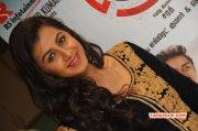 Film Actress Nikki Galrani Recent Wallpapers 7657