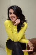Heroine Nikki Galrani 2016 Pic 3561