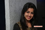 Indian Actress Nikki Galrani 2015 Wallpaper 5089