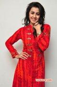Indian Actress Nikki Galrani Feb 2016 Stills 3797