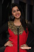Jan 2015 Still Indian Actress Nikki Galrani 9765