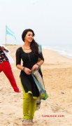 Jun 2016 Images Nikki Galrani Tamil Movie Actress 5911