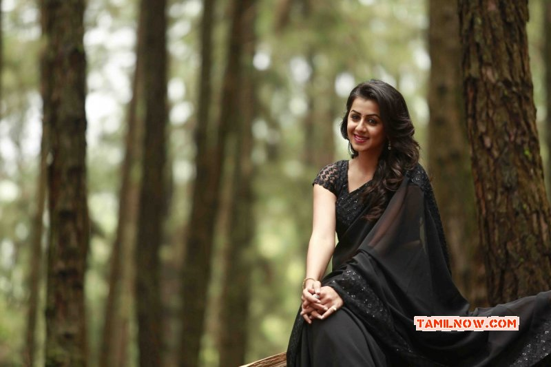 Latest Pics Film Actress Nikki Galrani 520