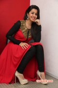 Latest Picture Cinema Actress Nikki Galrani 2455
