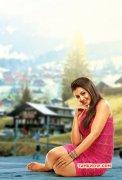 Latest Still Nikki Galrani Tamil Actress 2187