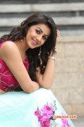 Mar 2016 Still Nikki Galrani South Actress 4169