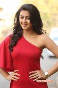 Mar 2016 Wallpapers Tamil Actress Nikki Galrani 5465