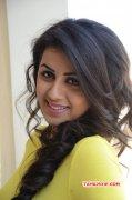 Movie Actress Nikki Galrani 2016 Photos 332