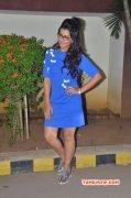 New Albums Nikki Galrani Indian Actress 436