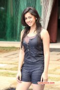 New Image Nikki Galrani Actress 206