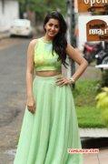 New Photos Tamil Movie Actress Nikki Galrani 2955