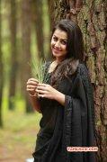 New Wallpaper Nikki Galrani Tamil Heroine 6976