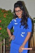 New Wallpaper Nikki Galrani Tamil Movie Actress 8185
