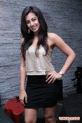 Nikki Galrani 4937