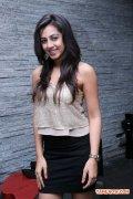 Nikki Galrani 7300