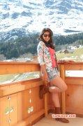 Nikki Galrani Actress Jan 2016 Stills 42