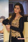 Nikki Galrani Actress Wallpapers 8715
