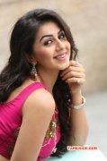 Nikki Galrani Film Actress New Pictures 802