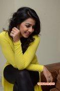 Nikki Galrani Film Actress New Wallpaper 1125