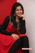 Nikki Galrani Heroine Jan 2015 Pictures 1227