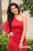 Nikki Galrani Heroine Mar 2016 Wallpapers 8095