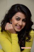 Nikki Galrani Indian Actress New Wallpapers 3007