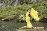 Nikki Galrani Indian Actress Pic 9387