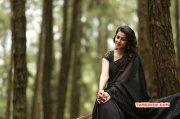 Nikki Galrani Movie Actress Latest Albums 8982