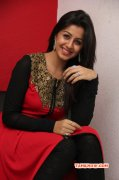 Nikki Galrani Movie Actress Recent Picture 395