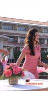 Nikki Galrani Movie Actress Recent Still 6973