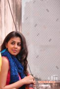Nikki Galrani New Wallpapers 9026