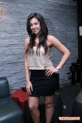 Nikki Galrani Stills 6837