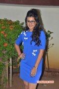 Nikki Galrani Tamil Heroine Latest Image 2243