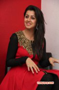 Nikki Galrani Tamil Heroine Latest Pic 3764