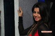 Nikki Galrani Tamil Movie Actress New Albums 7940