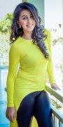 Photo Heroine Nikki Galrani 9554