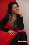 Photos Nikki Galrani Film Actress 3714