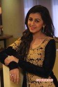 Picture Cinema Actress Nikki Galrani 7705