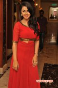 Recent Gallery Film Actress Nikki Galrani 3422