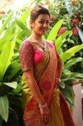 Recent Photos Nikki Galrani Movie Actress 4925