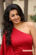 Recent Still Nikki Galrani Film Actress 5376