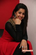 Recent Stills Nikki Galrani Movie Actress 3189