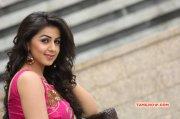 Recent Wallpaper Nikki Galrani South Actress 990