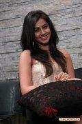 Tamil Actress Nikki Galrani 3354