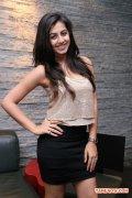 Tamil Actress Nikki Galrani Stills 962