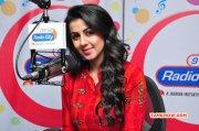 Tamil Actress Nikki Galrani Wallpaper 6251