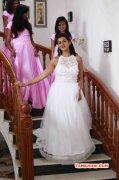 Tamil Heroine Nikki Galrani Latest Albums 5206